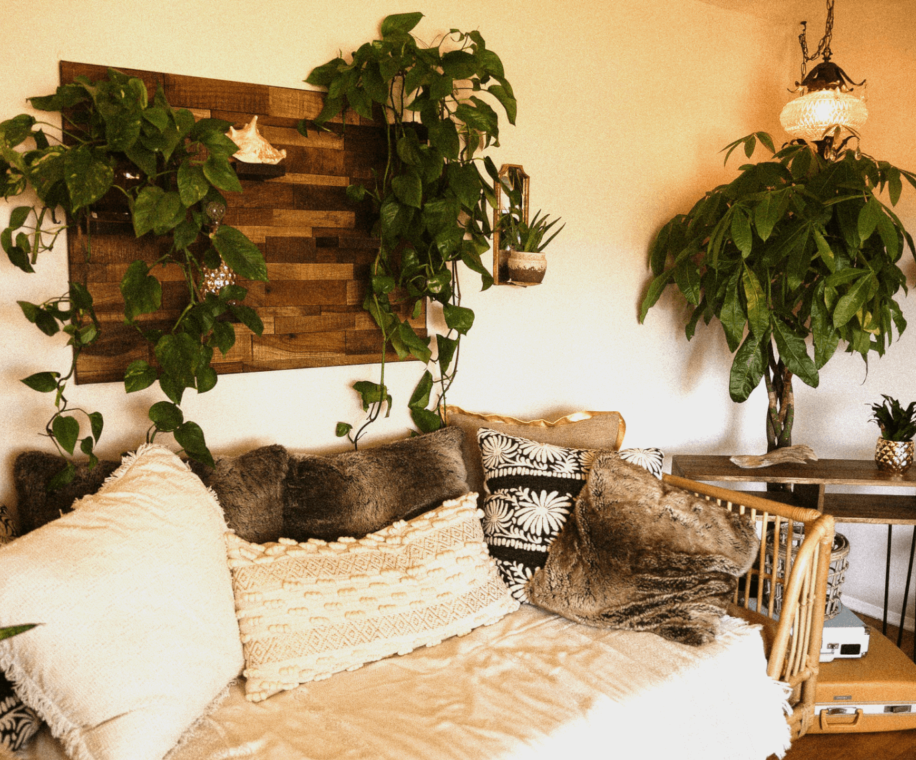 Wall planters in an apartment. Image credit: Wendy Wei